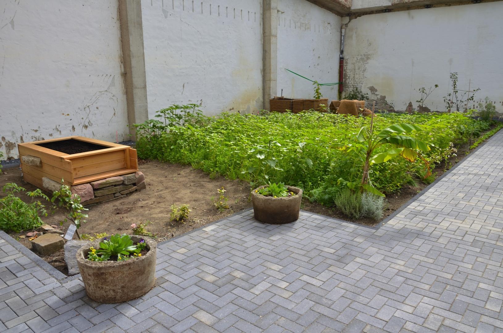 Garten am 24-09-2017 (1)